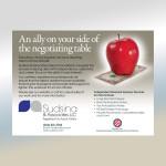 Sudsina & Associates Ad